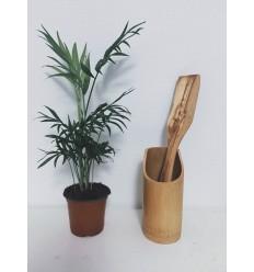 Spatule droite et longue en bois d'olivier