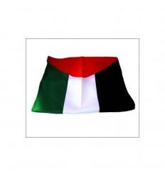 Drapeau de Palestine