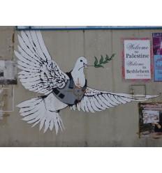 Mur de la paix en bois